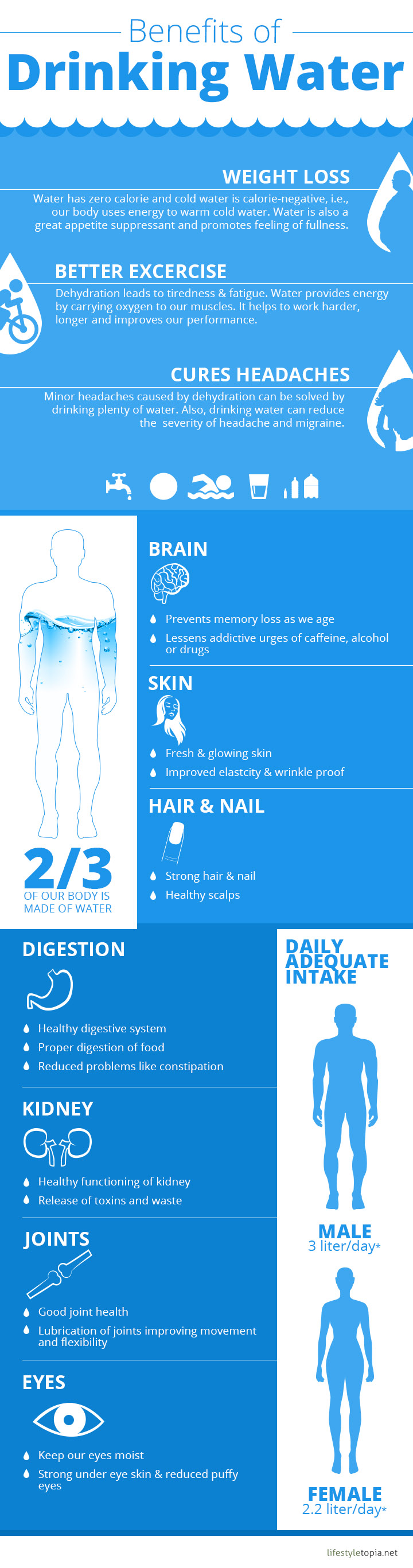 Benefits of Drinking Water Facts Infographic